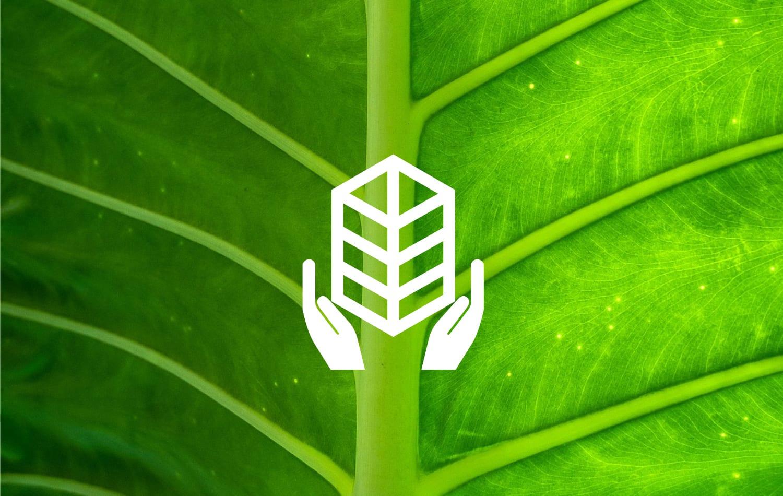 design graphique logo